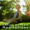 Calluna Wellness Meditations artwork