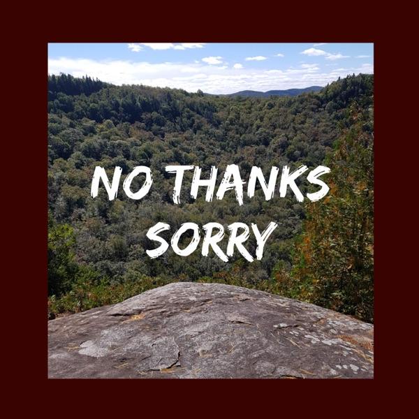 No Thanks Sorry