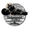 Underground Antics with Shane Pokroy artwork