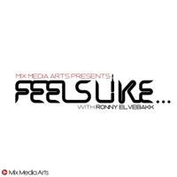 Podcast cover art for Feels Like...