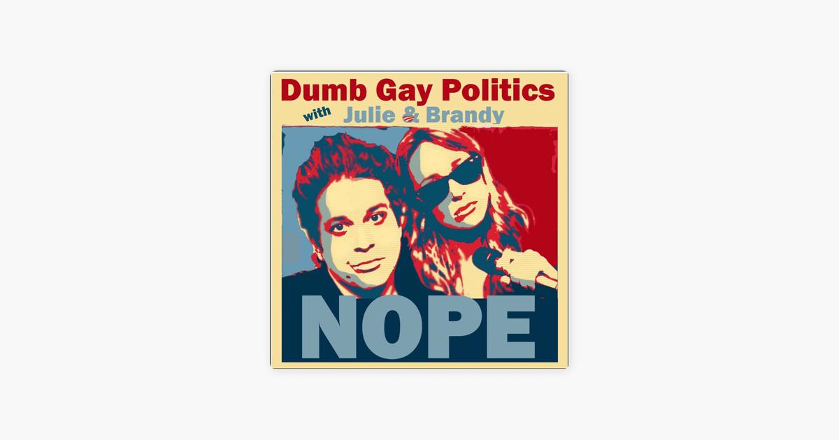 stupid Gays are