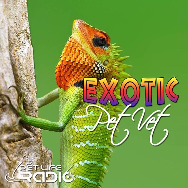 The Exotic Pet Vet on Pet Life Radio (PetLifeRadio.com)