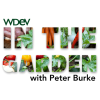 In the Garden podcast