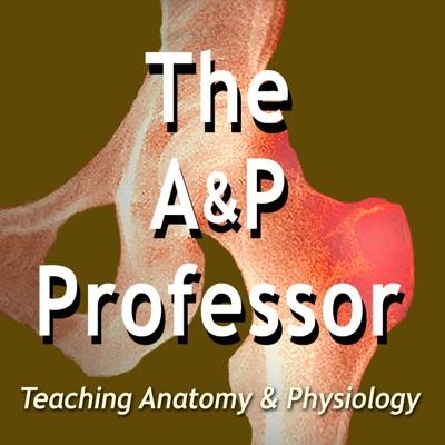The A&P Professor