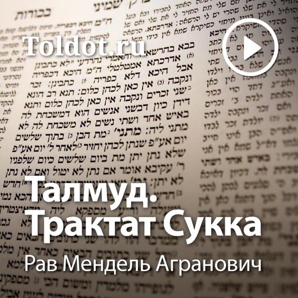 Рав Мендель Агранович — Талмуд. Трактат Сукка
