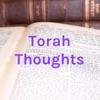 Torah Insights artwork