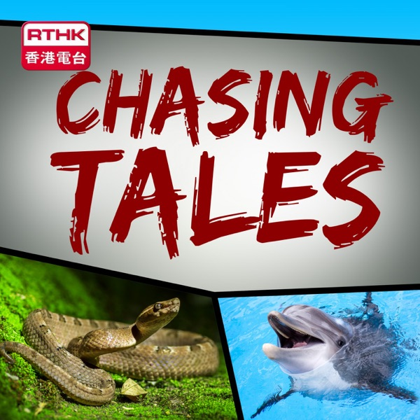 RTHK:Chasing Tales