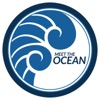 Meet the Ocean artwork