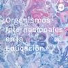 Organismos Internacionales en la Educación.