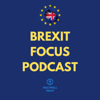 Holywell Brexit Focus Podcast podcast