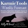 KarmicTools Forecast ~ Weekly Podcast artwork