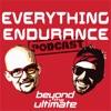 Everything Endurance artwork