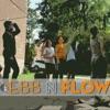 Ebb N Flow artwork