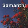 Samanthaaa artwork
