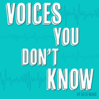 Voices You Don't Know podcast