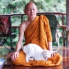 Luangpor Paisal Visalo's Podcast (หลวงพ่อไพศาล วิสาโล)