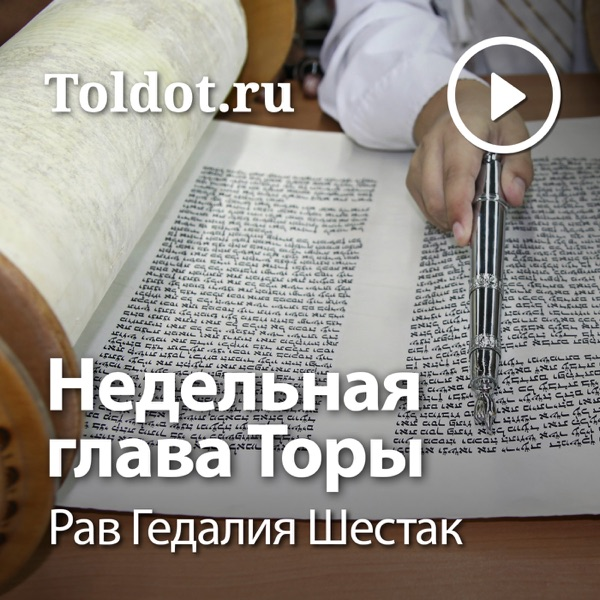 Рав Гедалия Шестак — Недельная глава Торы
