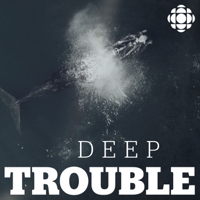 Podcast cover art for Deep Trouble