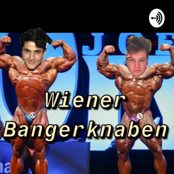 Wiener Bangerknaben