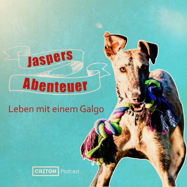Jaspers Abenteuer - Leben mit einem Galgo