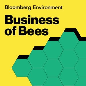 Business of Bees