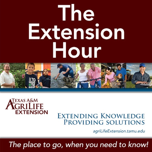 Montgomery County Texas A&M Agrilife Extension
