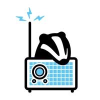 Radio Badger tech podcast podcast