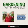 Gardening With Angelo