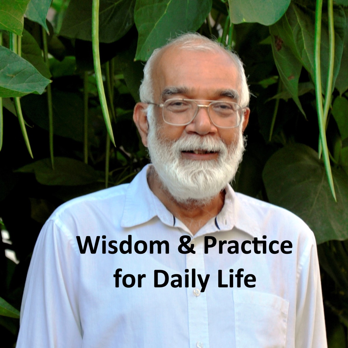 06. Wisdom & Practice for Daily Life