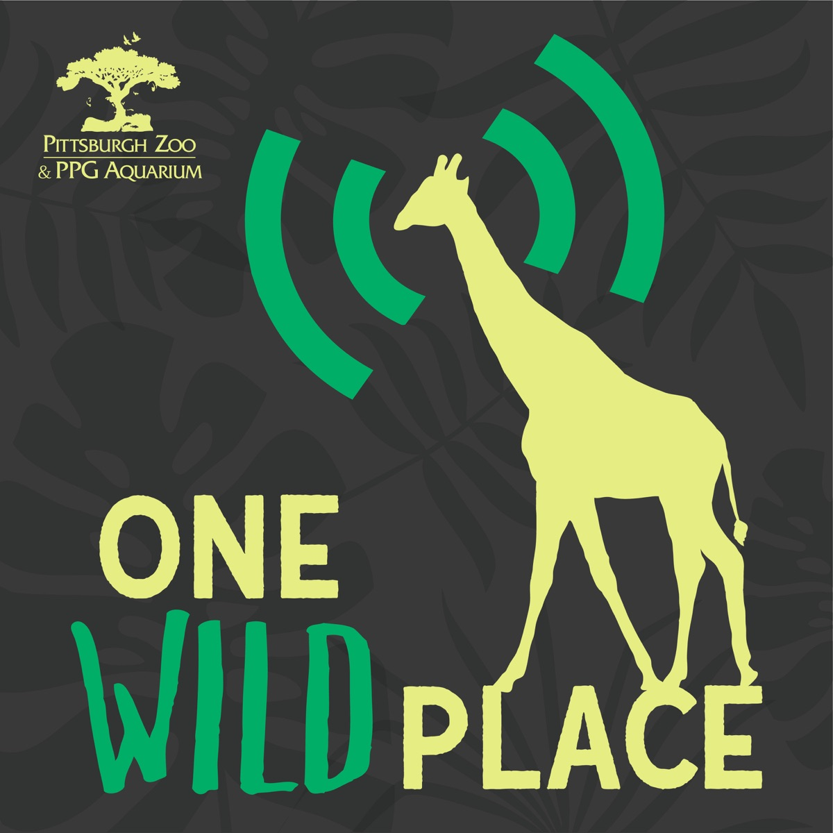 One Wild Place