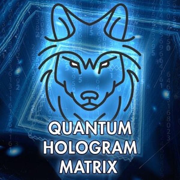 Quantum Hologram Matrix