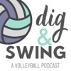 Dig & Swing artwork