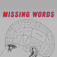 Missing Words Podcast podcast