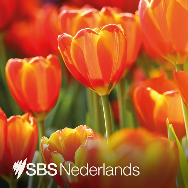 SBS Dutch - SBS Dutch