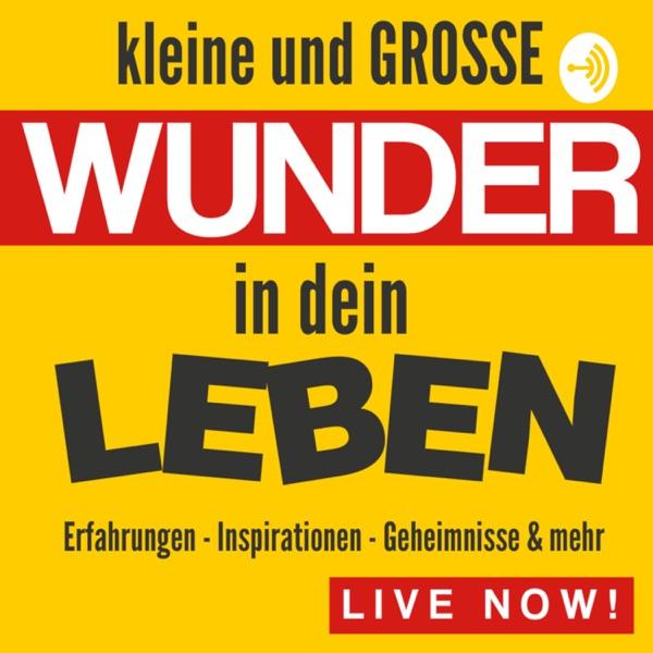 Kleine und GROSSE Wunder in deinem Leben by Enrico Schütze