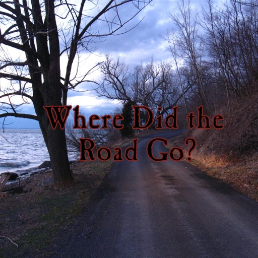 Cover image of Where Did the Road Go?