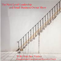 The Next Level Leadership and Small Business Owner Show