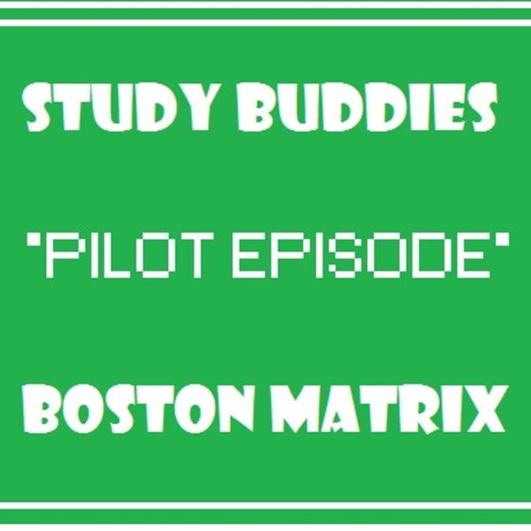 Study Buddies (Pilot) Boston Matrix: Business Studies