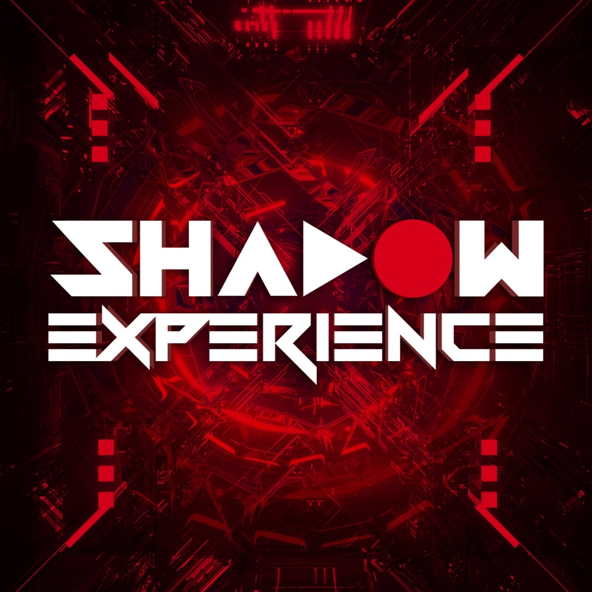 The Shadow Experience