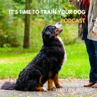 It's Time to Train Your Dog Podcast podcast