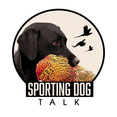 Sporting Dog Talk