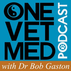 The Onevetmed Podcast With Dr Robert Gaston