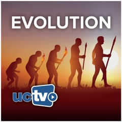 Evolution (Video)