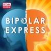 Bipolar Express artwork