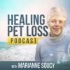 Healing Pet Loss Podcast artwork