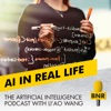 The Artificial Intelligence Podcast | BNR