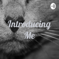 Introducing Me podcast