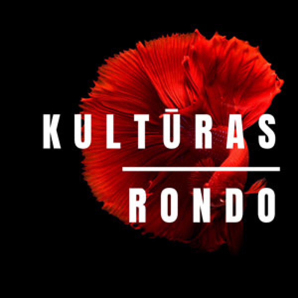 Kultūras Rondo