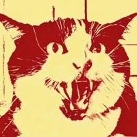 CINECATS! podcast