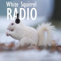 White Squirrel Radio podcast